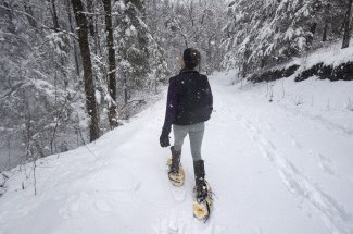 view our snowshoeing page