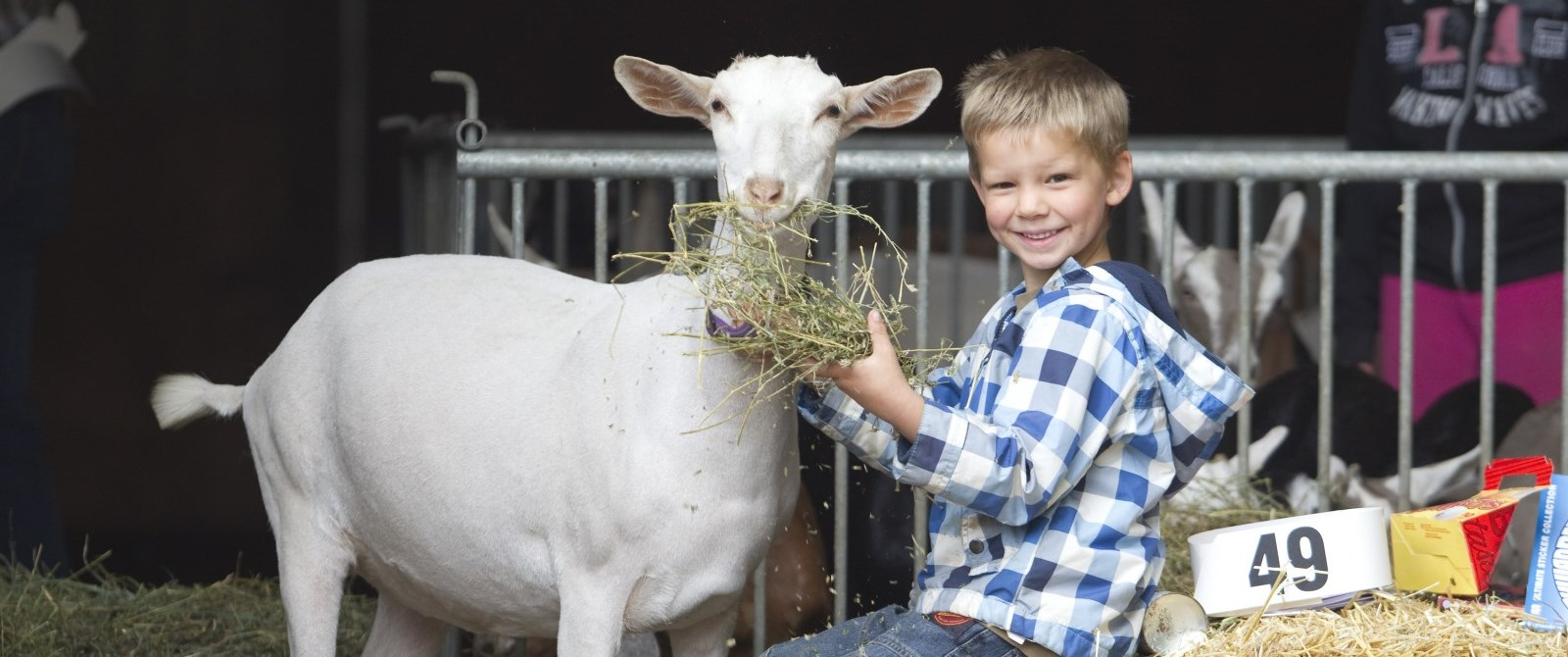 Child with goat at the fair