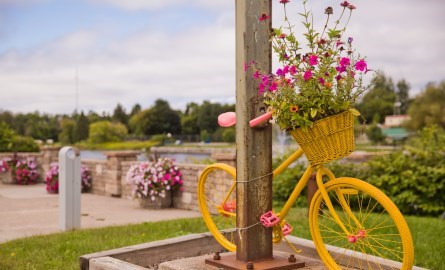 bike with flowers by waterfront